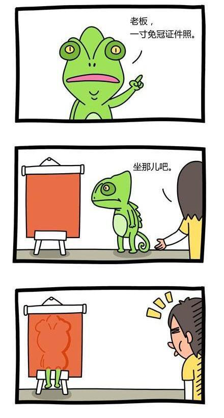 笑话 - 杨洺源 - 杨洺源
